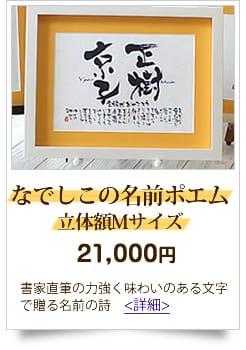 20,001円から23,000円までの予算 人気の名前の詩 なでしこの名前ポエム立体額Mサイズ